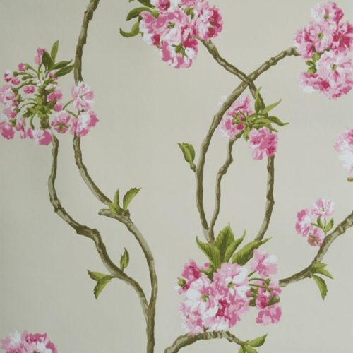 ORCHARD BLOSSOM NCW4027-01