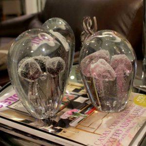 Medusas Cristal