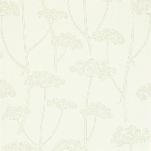 ANISE DCFL211646