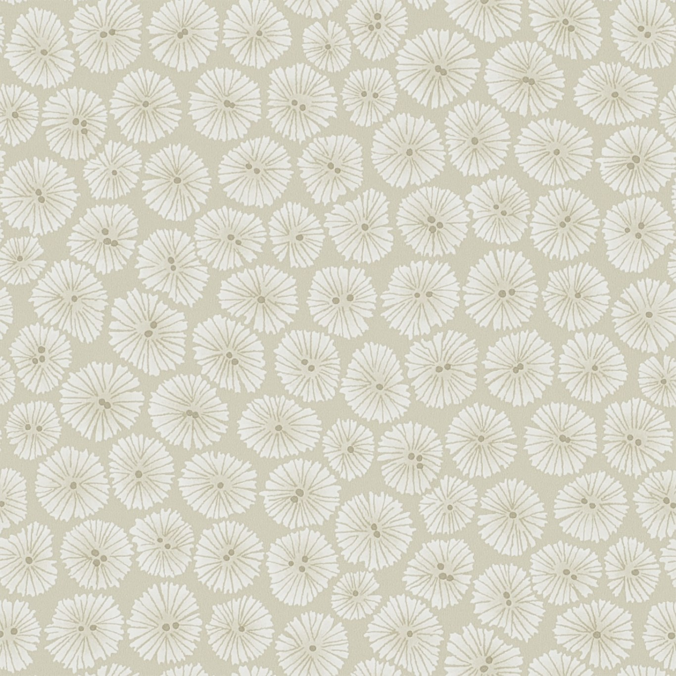 WIND FLOWERS DCHK213710