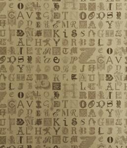 TYPECAST BG0400201