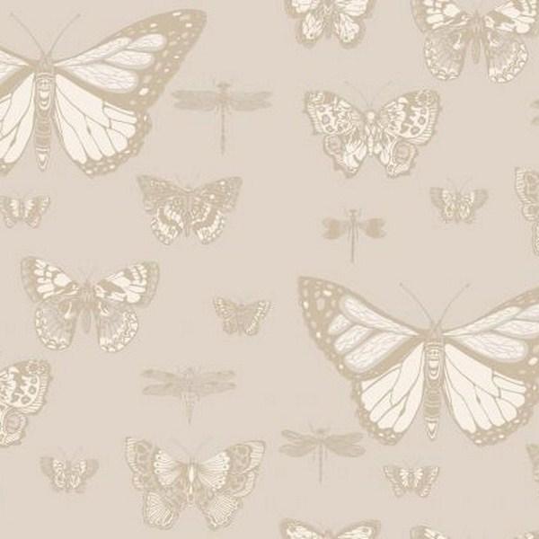 BUTTERFLIES&DRAGONFLIES 103-15064