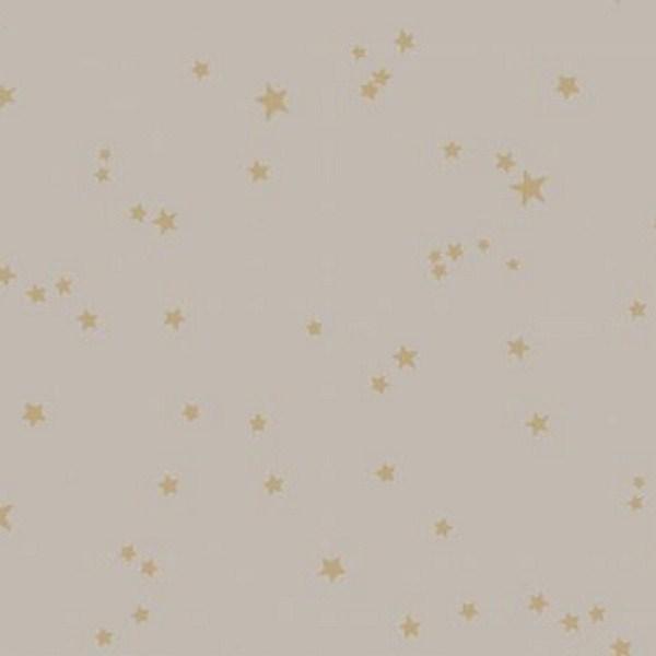 STARS 103-3013