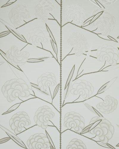 JACOBS TREE WV7JAC-06
