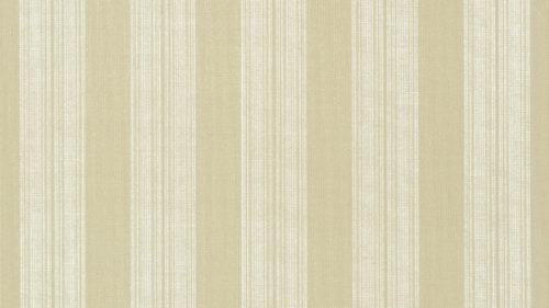 Deck Stripe T24345