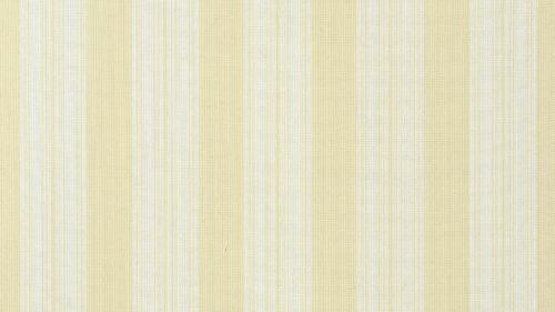 Deck Stripe T24346
