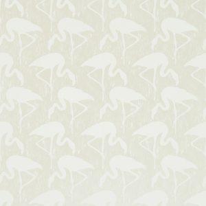 Flamingos-214564