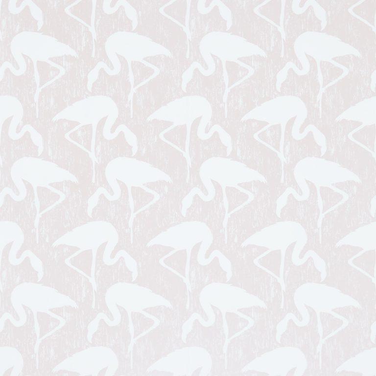 Flamingos-214565
