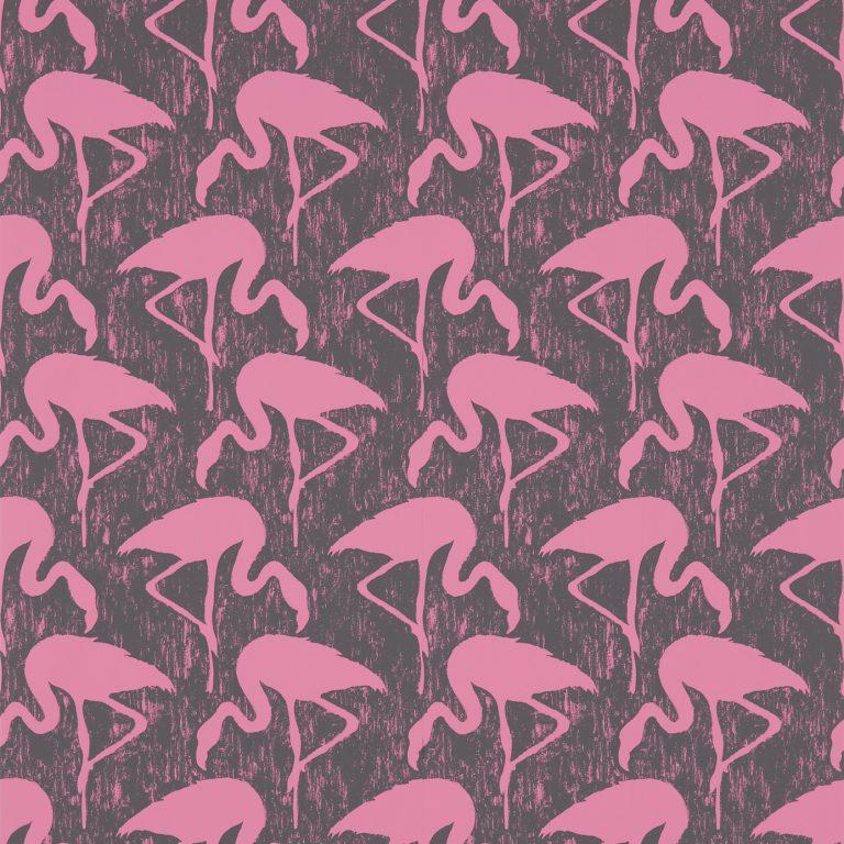 Flamingos-214567