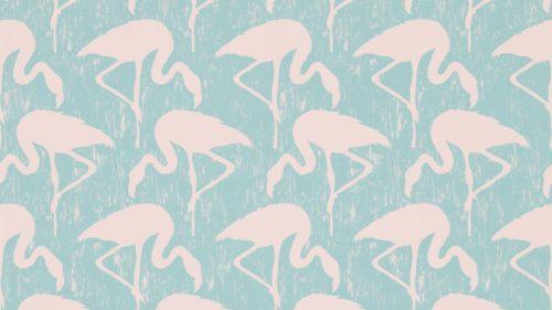 Flamingos-214569