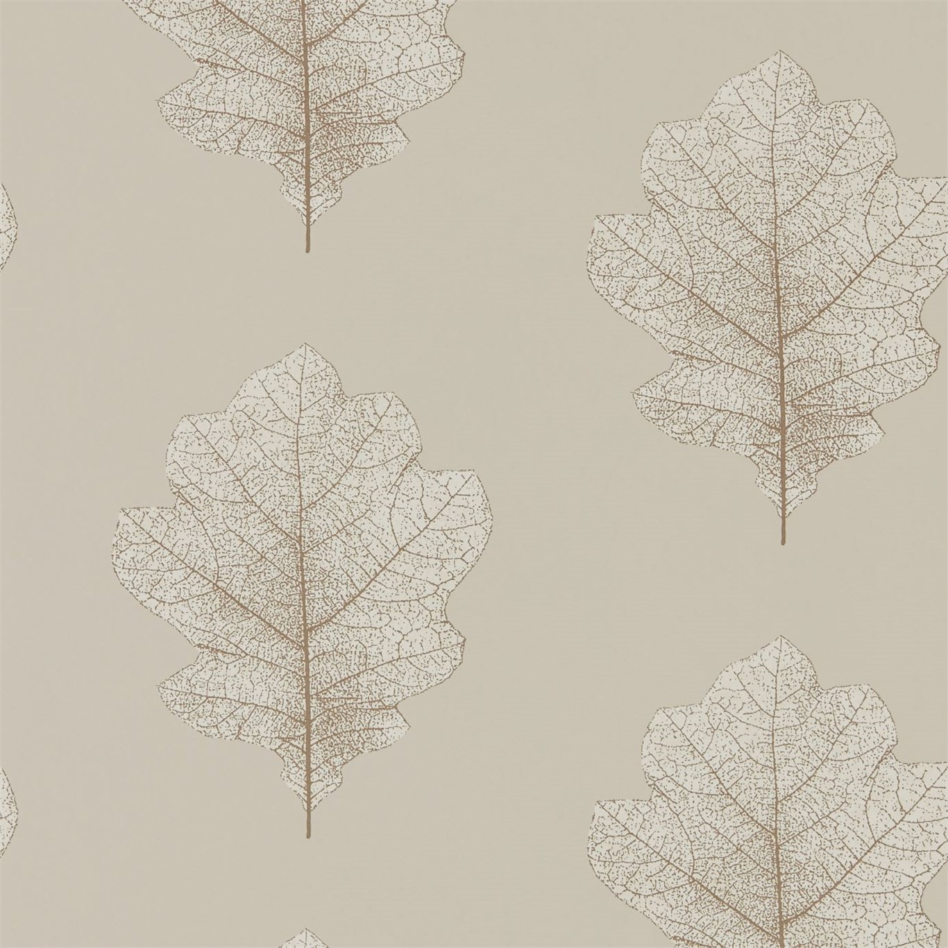 Oak Filigree 215698