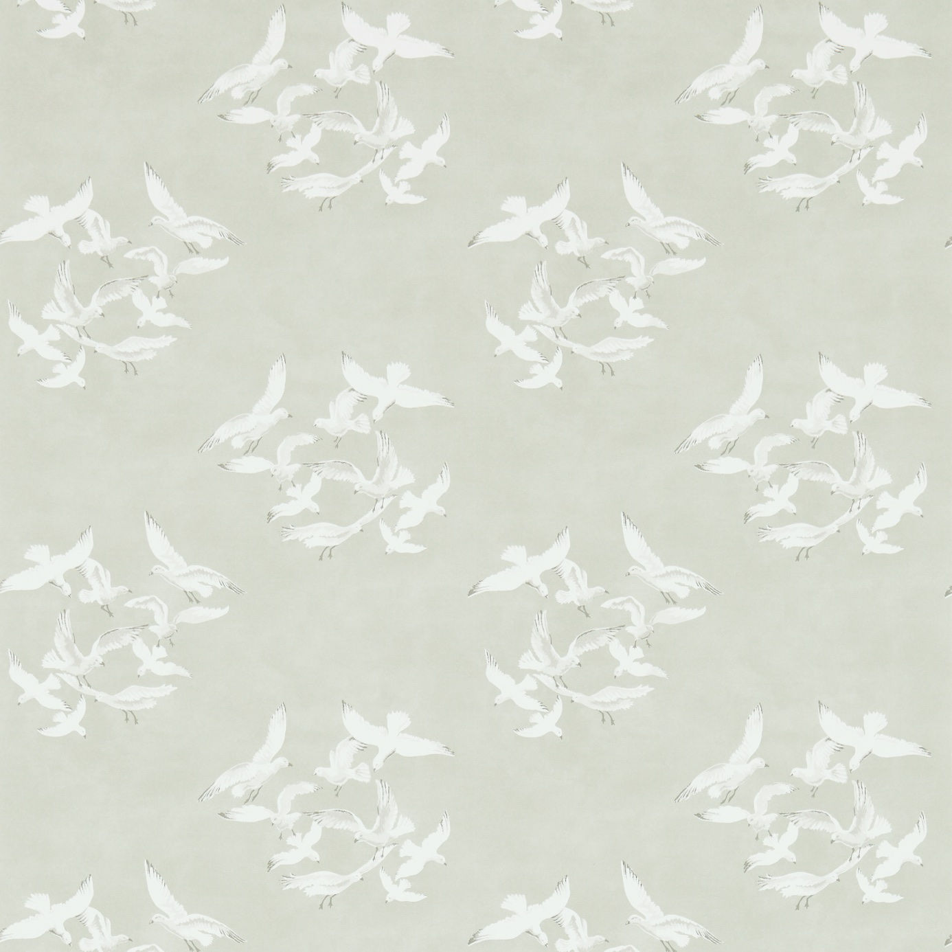 Seagulls-214587