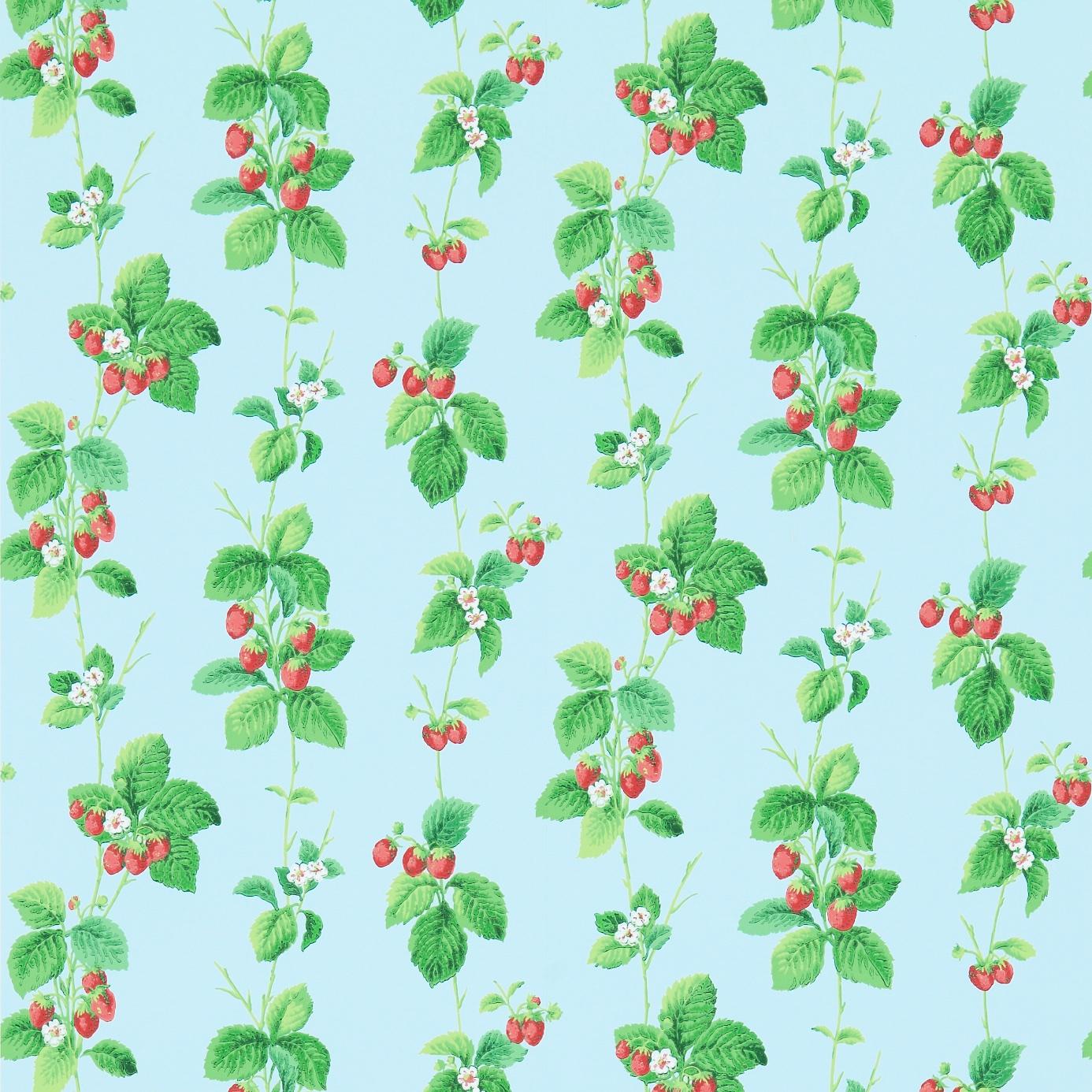Summer-Strawberries-214591