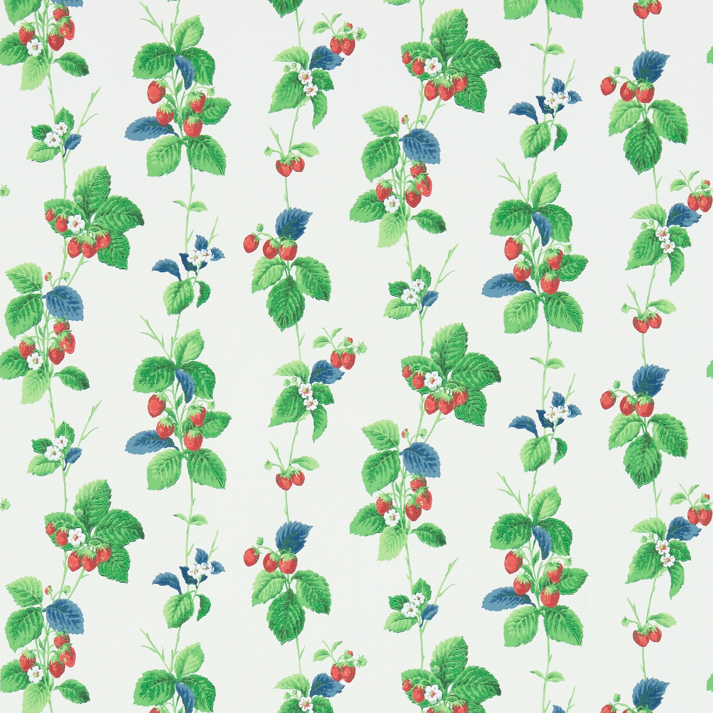 Summer-Strawberries-214592