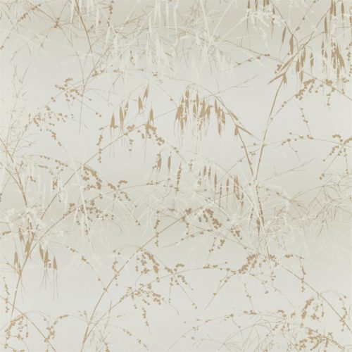 Meadow Grass 111409
