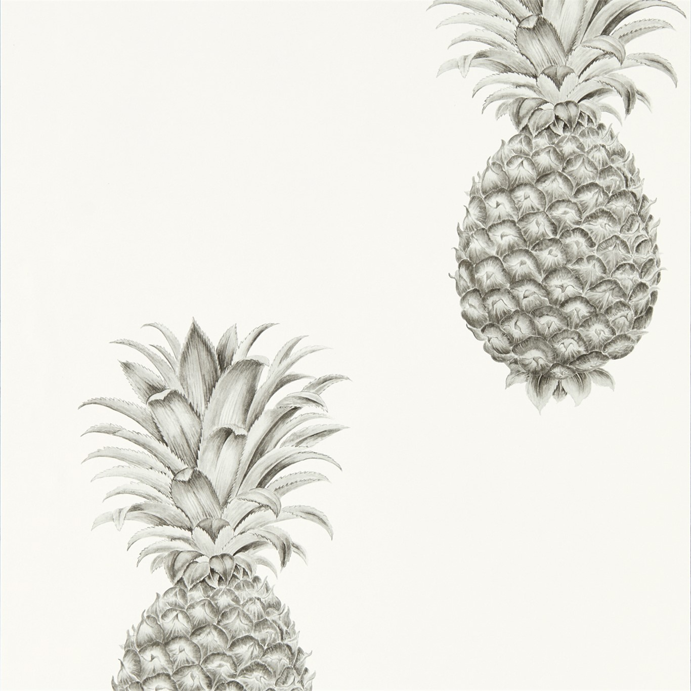 Pineapple Royale 216324