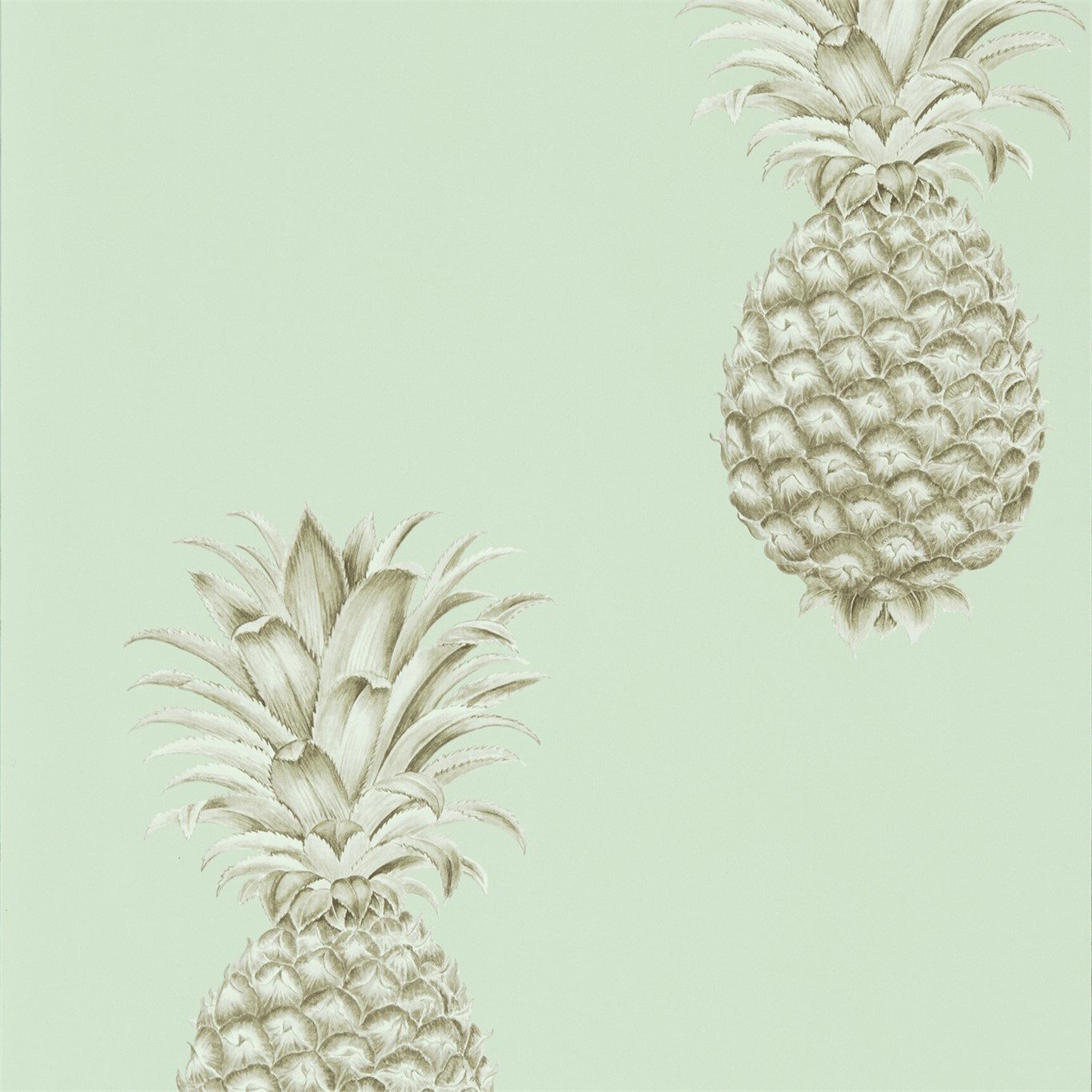 Pineapple Royale 216325
