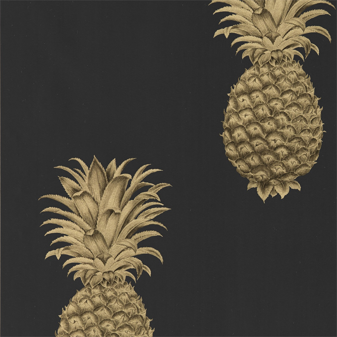 Pineapple Royale 216326